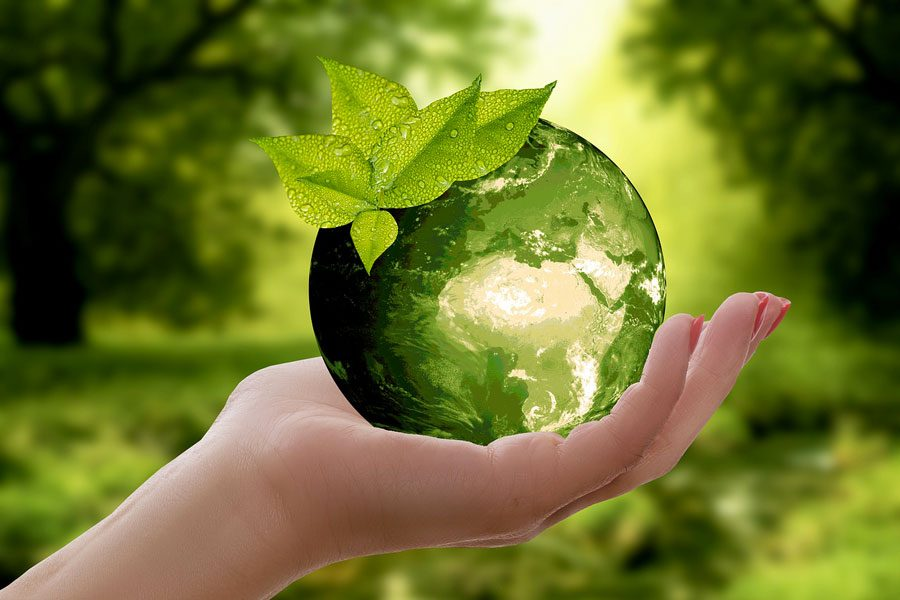 Infissi ecosostenibili